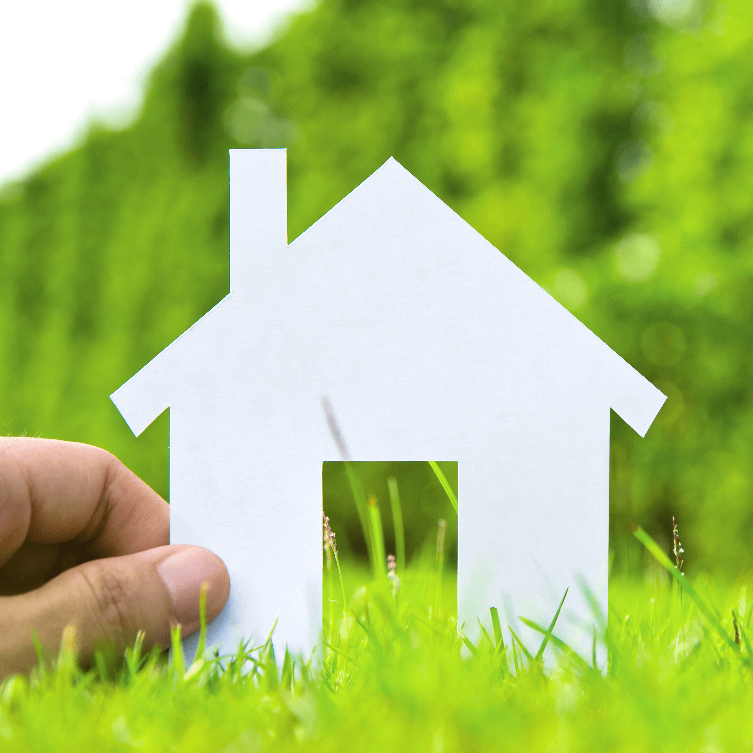 make your home healthier green home