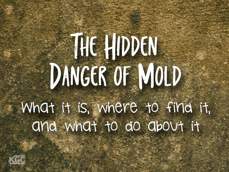 TN-The hidden danger of mold
